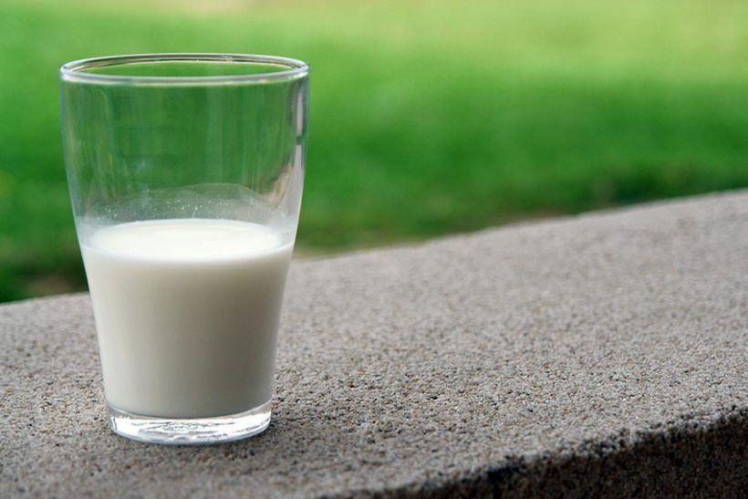 Leche, sí, tenéis muy mala leche 1