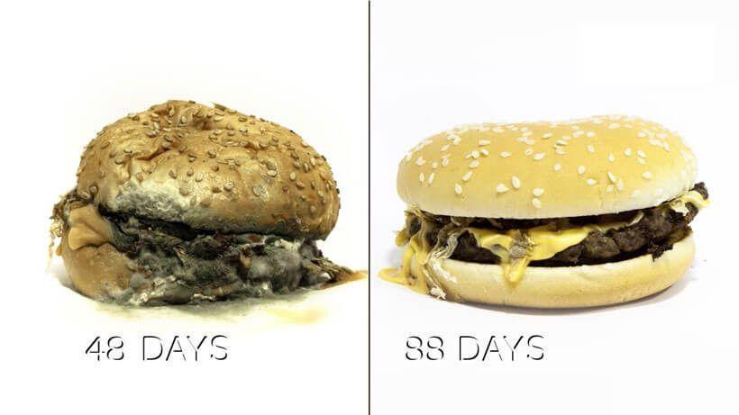 ADITIVOS y deterioro de alimentos 5