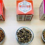 Los insectos comestibles llegan a España, y yo los pruebo