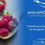 Arranca «microMOOCCA2» ciencia y alimentos