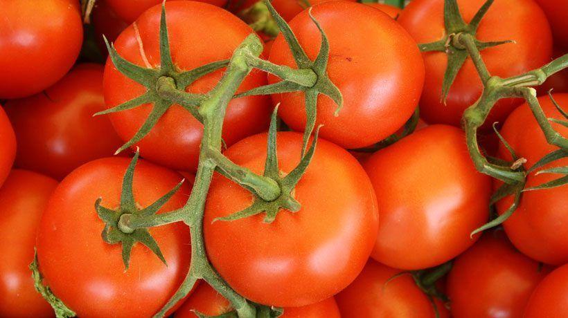 Tomate frito: análisis tecnólogo en el supermercado 2