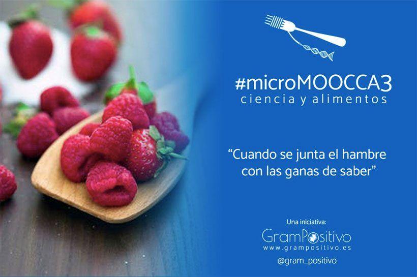 Comunicación en la empresa alimentaria: el reto de las redes sociales #microMOOCCA3 | Curso 1